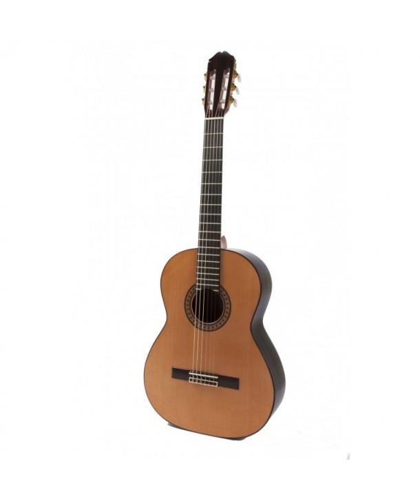 Guitarra Raimundo 146