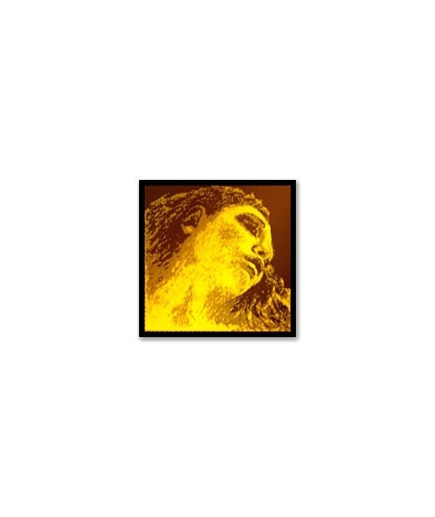 Cuerda Pirastro Evah Pirazzi Gold 415321
