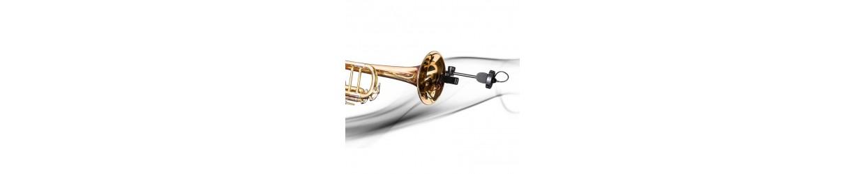 Micros Instrumentos Viento